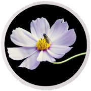 bee and Wildflower Round Beach Towel