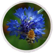 Round Beach Towel featuring the photograph Bee by Leticia Latocki