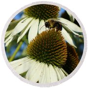 Round Beach Towel featuring the photograph Bee On A Cone Flower by Lingfai Leung
