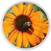 Bee On Flower Round Beach Towel by John Telfer