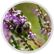 Bee On Heather Round Beach Towel