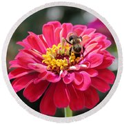 Round Beach Towel featuring the photograph Bee On Pink Flower by Cynthia Guinn