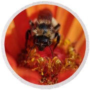 Bee Taking Care Of Business Round Beach Towel