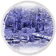 Round Beach Towel featuring the photograph Beech Woods by Jane McIlroy