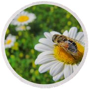 Honey Bee Pollination Services Round Beach Towel