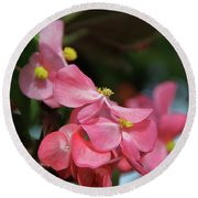 Begonia Beauty Round Beach Towel