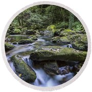 Round Beach Towel featuring the photograph Belelle River Neda Galicia Spain by Pablo Avanzini