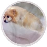 Bella Boo Round Beach Towel by Colleen Taylor