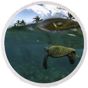 Below The Surface Round Beach Towel by Brad Scott