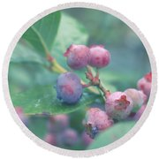 Round Beach Towel featuring the photograph Berries For You by Rachel Mirror