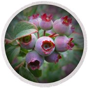 Berry Unripe Round Beach Towel by MTBobbins Photography