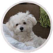 Molly 2 Round Beach Towel