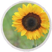 Big Bright Yellow Colorful Sunflower Art Print Round Beach Towel