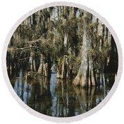 Big Cypress National Preserve Round Beach Towel