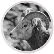 Big Horn Sheep Profile Round Beach Towel