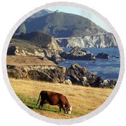 Round Beach Towel featuring the photograph Big Sur Cow by James B Toy