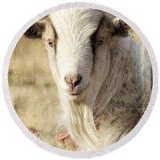 Billy Goat Round Beach Towel