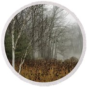 Birch In Winter Round Beach Towel