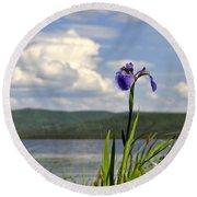 Round Beach Towel featuring the photograph Birch Lake Iris by Cathy Mahnke