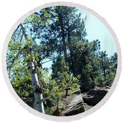 Birch Trees Round Beach Towel by Dany Lison