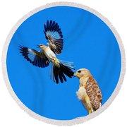 Bird Alert Round Beach Towel