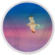 Round Beach Towel featuring the photograph Bird At Sunset by Athala Carole Bruckner