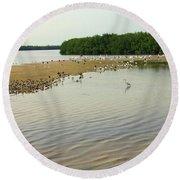 Bird Experience Round Beach Towel by Rosalie Scanlon