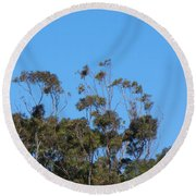 Round Beach Towel featuring the photograph Bird In A Tree by Mark Blauhoefer