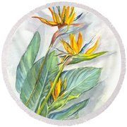 Bird Of Paradise Round Beach Towel by Carol Wisniewski