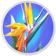 Bird Of Paradise Flower Round Beach Towel