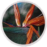 Round Beach Towel featuring the photograph Bird-of-paradise by Nadalyn Larsen