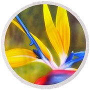 Bird Of Paradise Revisited Round Beach Towel