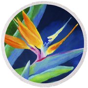 Bird Of Paradise Round Beach Towel by Stephen Anderson