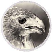 Bird Of Prey Round Beach Towel by Dan Sproul