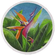 Hawaiian Bird Of Paradise Round Beach Towel