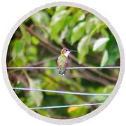 Round Beach Towel featuring the photograph Bird On A Wire by Nick Kirby
