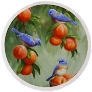 Bird Painting - Bluebirds And Peaches Round Beach Towel
