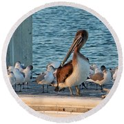 Birds - Among Friends Round Beach Towel by HH Photography of Florida