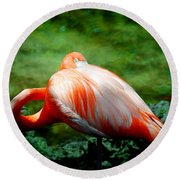 Bird's Eye View Round Beach Towel