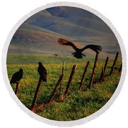 Round Beach Towel featuring the photograph Birds On A Fence by Matt Harang