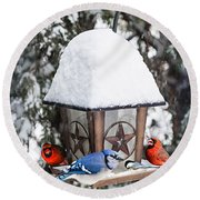 Birds On Bird Feeder In Winter Round Beach Towel