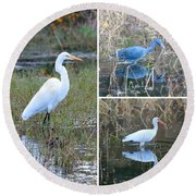 Birds On Pond Collage Round Beach Towel