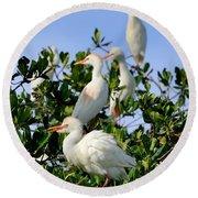 Birds Quartet Round Beach Towel