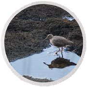 Bird's Reflection Round Beach Towel by Belinda Greb