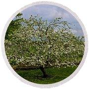 Birth Of Apples Round Beach Towel by John Haldane
