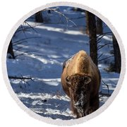 Round Beach Towel featuring the photograph Bison In Winter by Michael Chatt