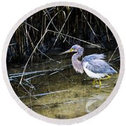 Bittern At Dusk  Round Beach Towel by Mary Ward