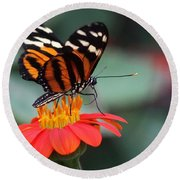 Black And Brown Butterfly On A Red Flower Round Beach Towel