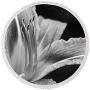 Black And White Daylily Flower Round Beach Towel