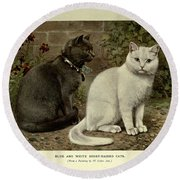 Black And White Short-haired Cats Round Beach Towel